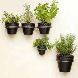 wall plant holders plant holder brackets west elm