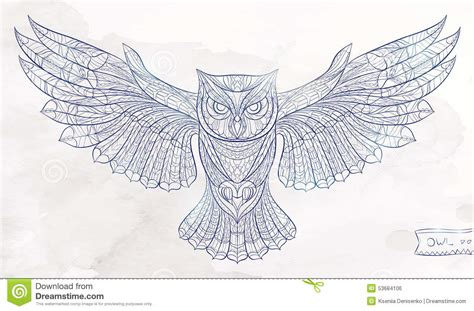 patterned owl stock vector image 53684106