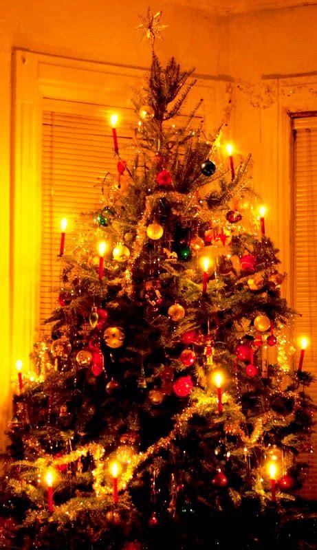 fashioned tree lights fashioned tree lights