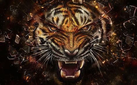 tiger roar wallpapers hd hd wallpapers hd