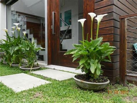 como tener un jardin en casa como hacer un jardin hermoso en casa