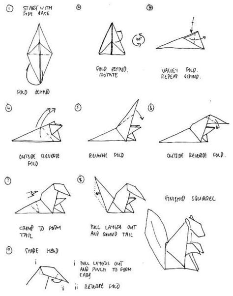 Origami Squirrel Diagram - image result for http 4 bp