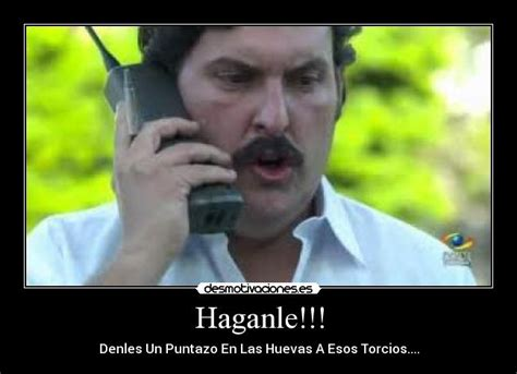 Pablo Escobar Meme - top pablo escobar memes wallpapers