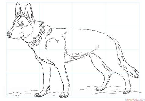 german shepherd drawing how to draw a german shepherd step by step drawing tutorials
