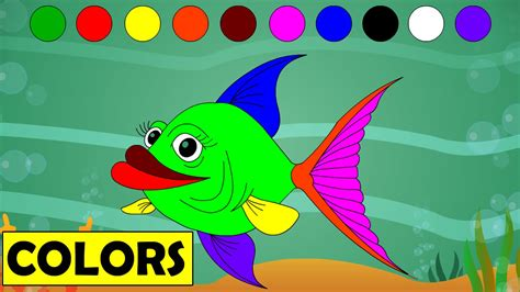 fish colors learn colors with fish educational