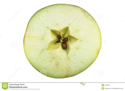 cross section of an apple apple cross section isolated on white background royalty