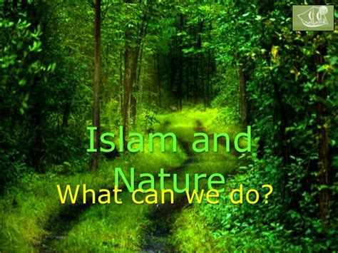 islam and nature