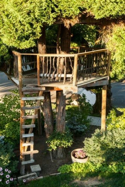 dream   quiet place   tree house