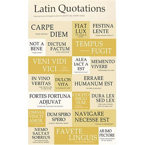 biography latin definition 58 best latin phrases images on pinterest languages