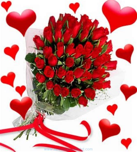valentines flowers day flowers hd images photos pics hd walls