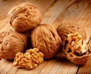 Kacang Kenari manfaat kacang kenari untuk kesehatan dan pengobatan