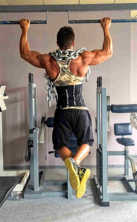 best home pull up bars work your effectively