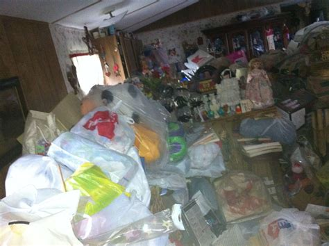 professional basement cleaners garage storage systems