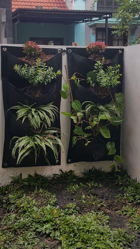 jual beli pot dinding vertical garden pot bunga tanaman