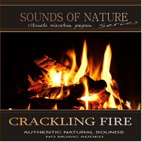 Crackling Fireplace Sound by Forest Ambience Healing Nature Sounds For