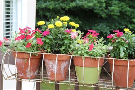 Wire Window Planters by Metal Wire Window Box With Flower Pots Gardening