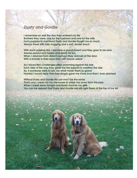 golden retrievals poem dusty and gordie tribute poem golden retriever dogs dogs dogs