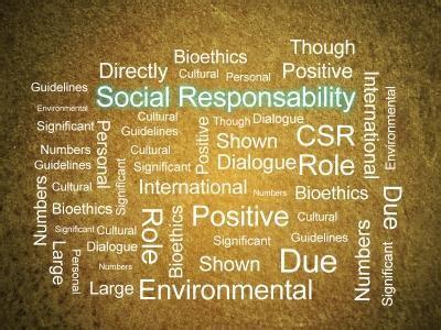 Csr Mba Skool by Sustainability Development Through Csr Activities In India