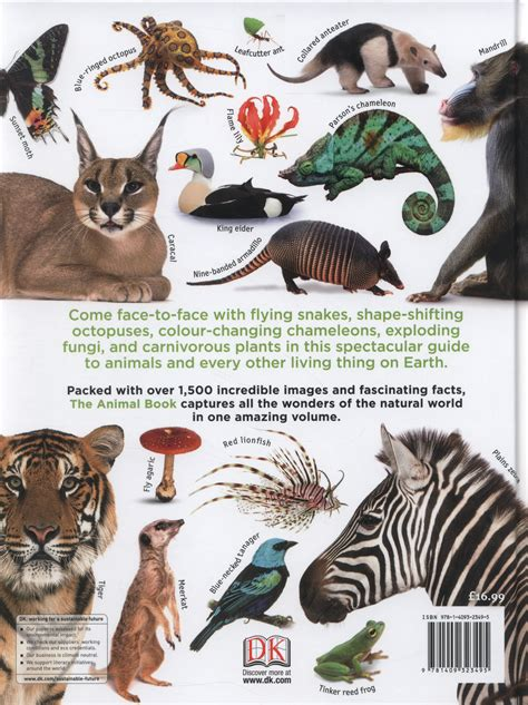 the animal book a visual encyclopedia of on earth