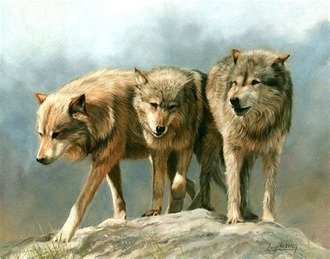 Bicycle And Square Wolvis wolves three timber wolves on one 16 inch square fabric panel