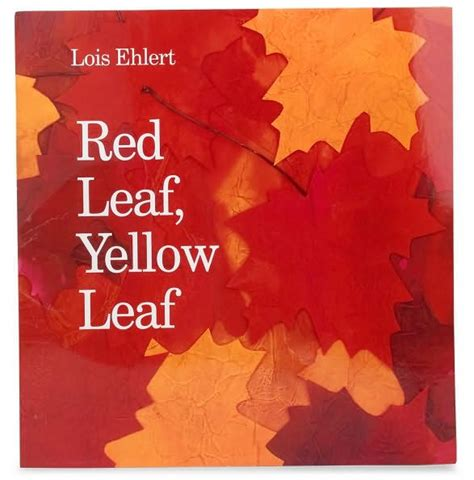 red leaf yellow leaf red leaf yellow leaf big book by lois ehlert other format barnes noble 174