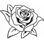Dibujos De Rosas Para Colorear  Buscar Con Google Pintura En Tela