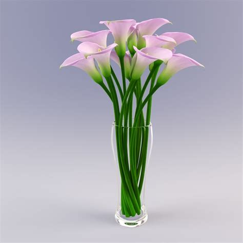 A Vase With Flowers by 3d Vase Calla Flowers