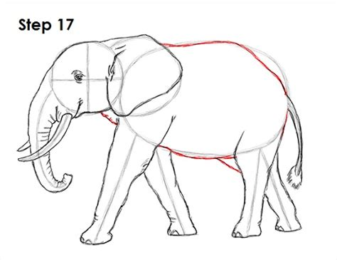 how to draw a doodle elephant elephant drawing www pixshark images galleries