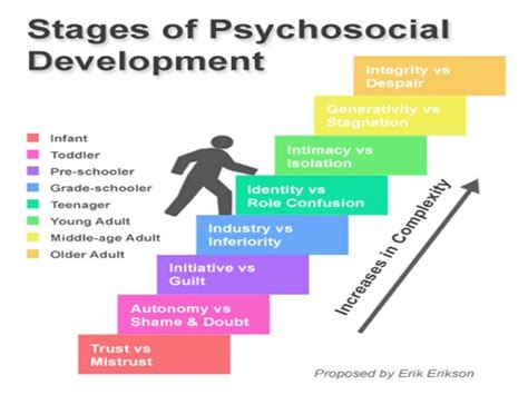 What Is L Development by Erikson S Theory Of Personality Sheet By Davidpol