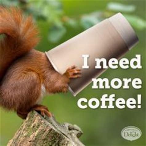 Need Coffee Meme - humpday on pinterest happy wednesday wine wednesday