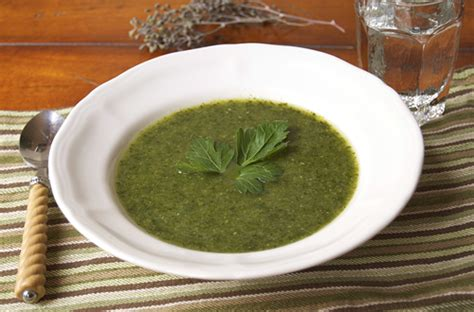Green Detox Soup by Detox Green Machine Soup Savour The Senses
