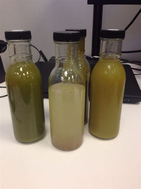 Revive Detox Yelp by Juice Cleanse Stuff Yelp