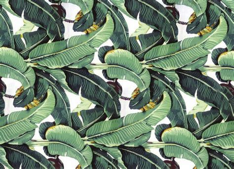 bananas leaf wallpaper the terrier and lobster wear your wallpaper beverly