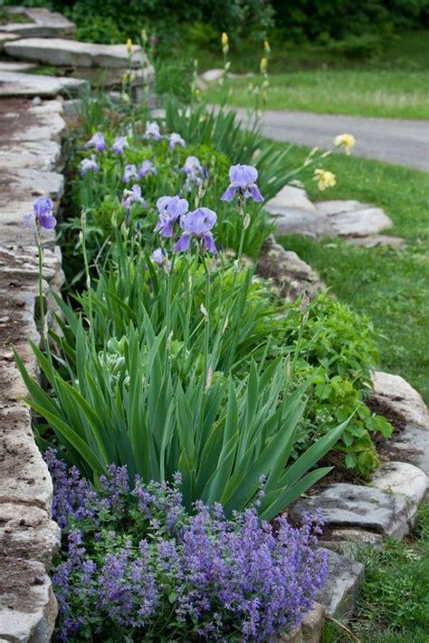 steingarten anlegen 647 best garten images on gardening backyard