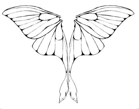 fairy wings to color luna moth wings by junkyardxxxdog