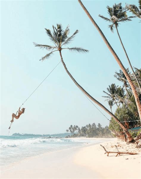 buy tree swing 10 best beaches in sri lanka the asia collective