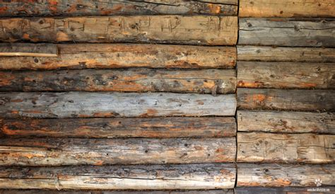 wall of wood index of var albums free textures wood textures
