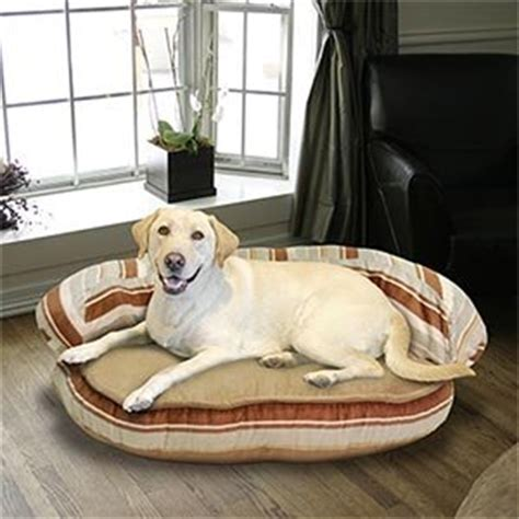 kirkland dog beds amazon com kirkland signature 42 quot bolster pet bed pet
