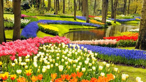 spring gardens keukenhof the most beautiful spring garden travell and