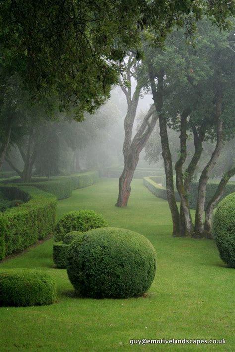 hedge topiary 25 best secret gardens ideas on