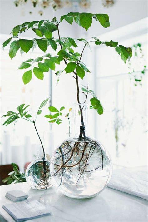 pflanzen ideen 32 sehr interessante vasen deko ideen archzine net