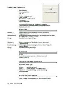 Curriculum Vitae Job Application by Templates And Examples Joblers