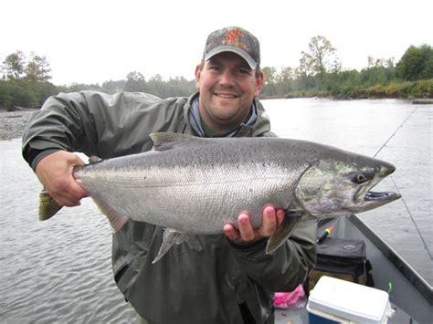 Feeder King Salmon feeder king salmon images