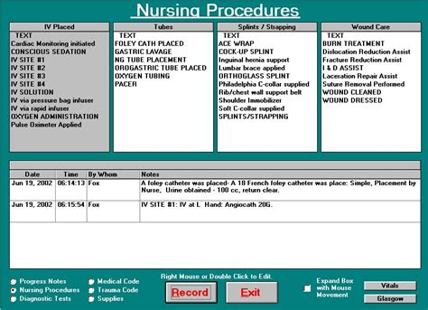 nursing templates for documentation nursing documentation patient care and