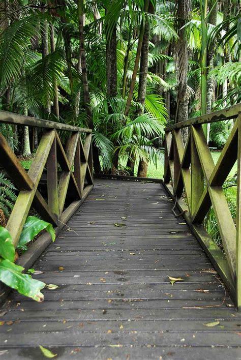 Tamborine Mountain Botanic Gardens Mount Tamborine Or Tamborine Mountain Travel2next