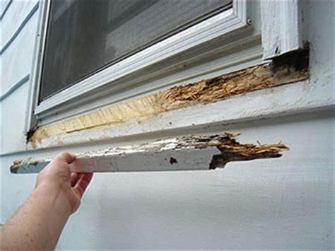 Replace Exterior Window Sill Nose Replace Rotted Window Sill Pictures To Pin On