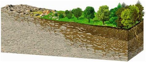imagenes 3d en el suelo consultor 237 a y educaci 243 n ambiental a 241 o internacional de