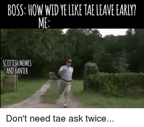 Scottish Memes - boss howwidyelike taeleave early scottish memes and banter