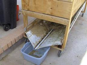 how to catch a rabbit in your backyard 1000 ideas about rabbit hutches on rabbits