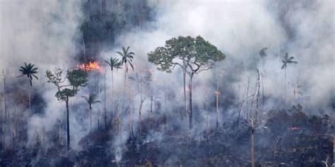 Biomars Lung florestas ardem em todo o pa 237 s ecourbana